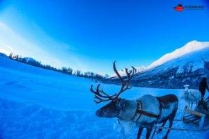 aida-winter-im-hohen-norden-16