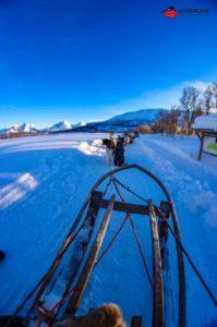aida-winter-im-hohen-norden