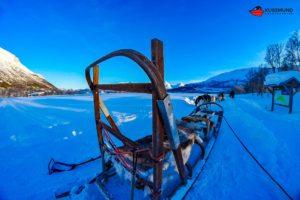 aida-winter-im-hohen-norden-34