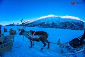 aida-winter-im-hohen-norden-35