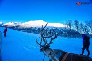 aida-winter-im-hohen-norden-5